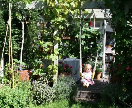 Living Colour's Edible Family Garden – Summer 2011