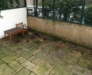 Existing-Garden-Clabon-Mews